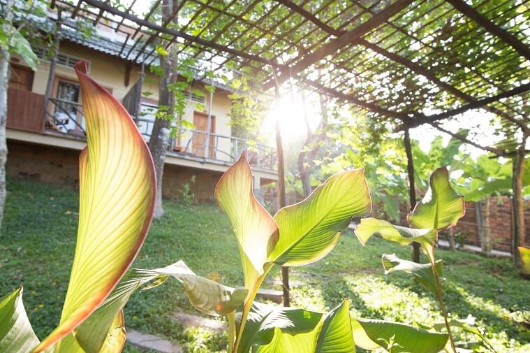 Phòng Deluxe Double Garden View