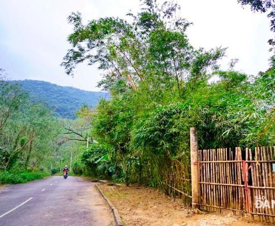 Sơn Trà Tịnh Viên - Đà Nẵng