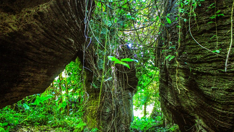 Không thốt nên lời với vẻ đẹp của 'công viên kỷ Jura' bị lãng quên cách Tam Kỳ chỉ 35 km