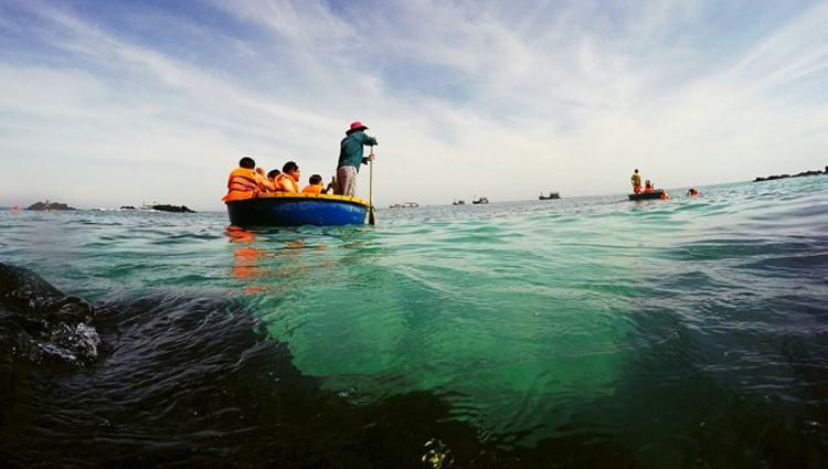 Du lịch đảo Lý Sơn trải nghiệm đi thuyền thúng ngắm san hô ở đảo Bé