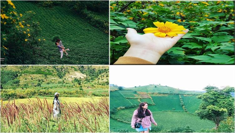 Set kèo đi Gia Lai để tham dự lễ hội hoa dã quỳ Chư Đăng Ya năm 2017