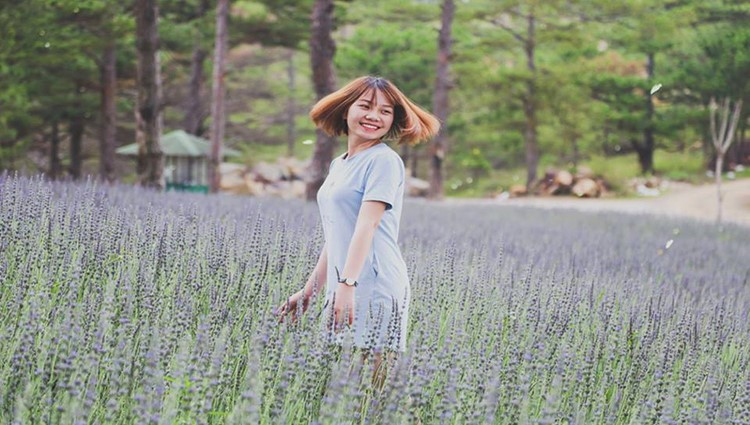 Đến Đà Lạt check-in cánh đồng lavender ở thung lũng tình yêu
