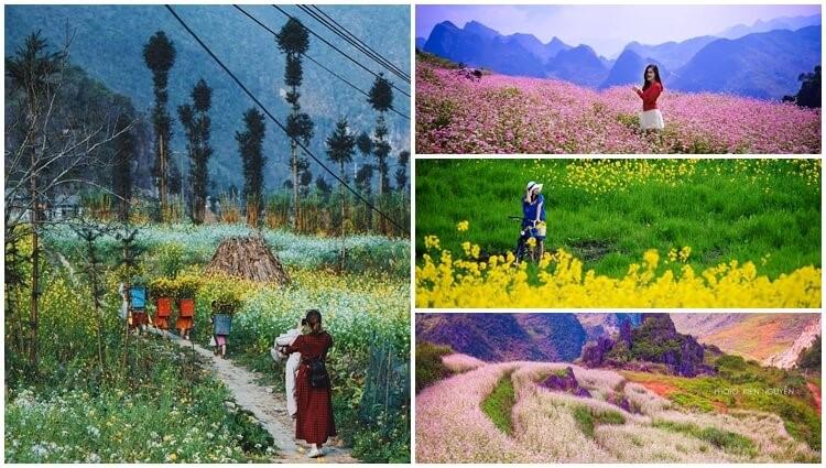 Bật mí kinh nghiệm Du lịch thiên đường Hà Giang đầy sắc màu