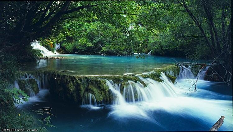 Du lịch Huế nhớ đừng bỏ qua vườn quốc gia Bạch Mã