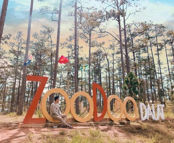 Tour Tham Quan Sở Thú Zoodoo